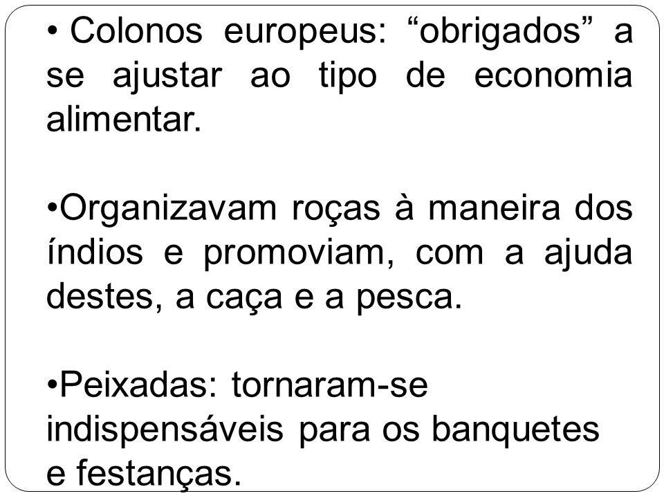 Colonos europeus: obrigados a se ajustar ao tipo de economia alimentar. Organizavam roças à maneira dos índios e promoviam, com a ajuda destes, a caça