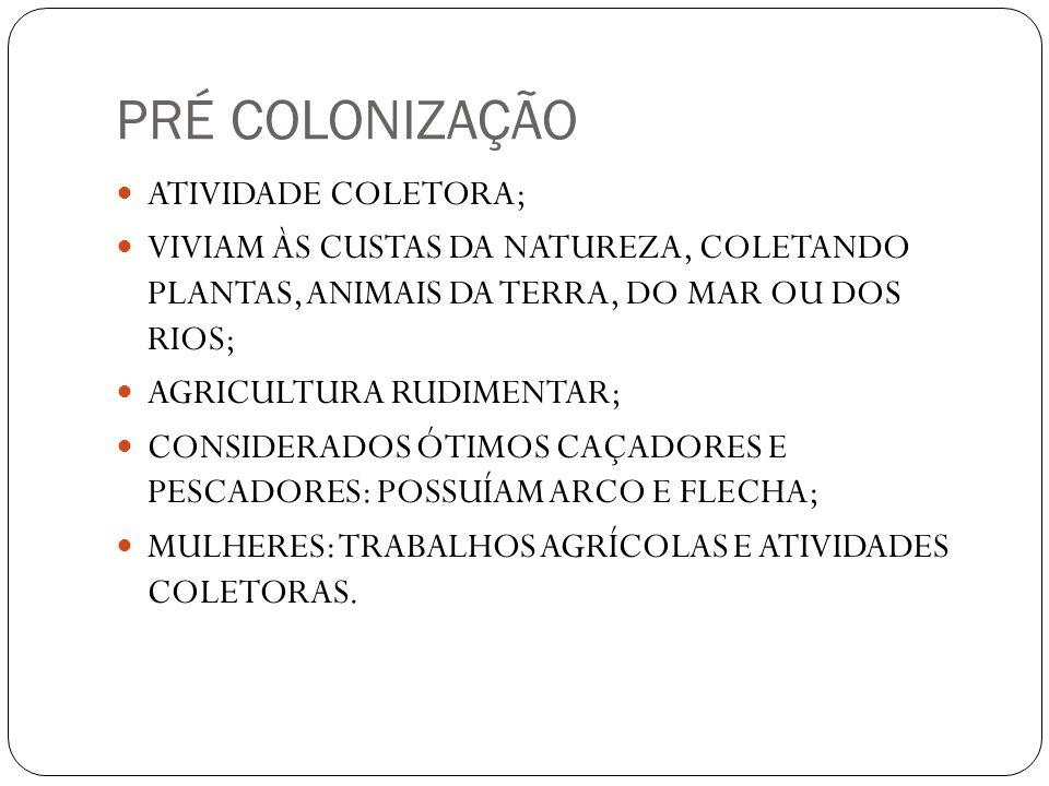 PRÉ COLONIZAÇÃO ATIVIDADE COLETORA; VIVIAM ÀS CUSTAS DA NATUREZA, COLETANDO PLANTAS, ANIMAIS DA TERRA, DO MAR OU DOS RIOS; AGRICULTURA RUDIMENTAR; CON