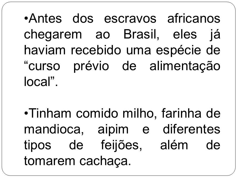 Antes dos escravos africanos chegarem ao Brasil, eles já haviam recebido uma espécie de curso prévio de alimentação local. Tinham comido milho, farinh