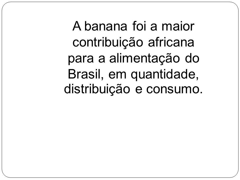 A banana foi a maior contribuição africana para a alimentação do Brasil, em quantidade, distribuição e consumo.