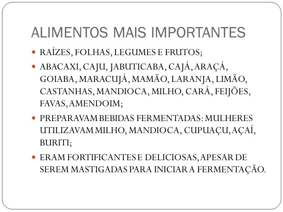 ALIMENTOS MAIS IMPORTANTES RAÍZES, FOLHAS, LEGUMES E FRUTOS; ABACAXI, CAJU, JABUTICABA, CAJÁ, ARAÇÁ, GOIABA, MARACUJÁ, MAMÃO, LARANJA, LIMÃO, CASTANHA