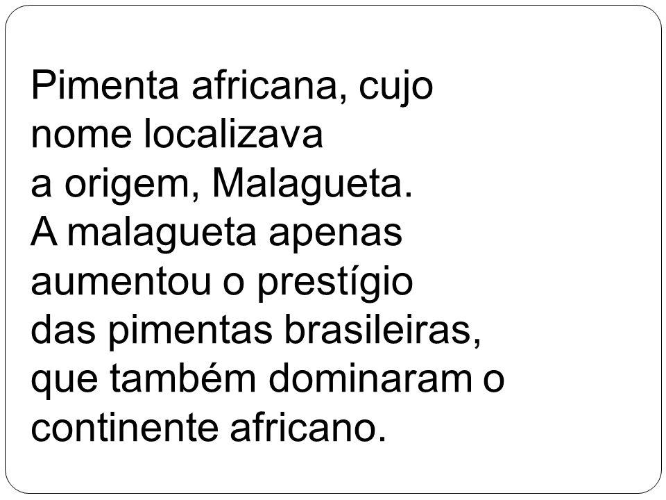Pimenta africana, cujo nome localizava a origem, Malagueta. A malagueta apenas aumentou o prestígio das pimentas brasileiras, que também dominaram o c
