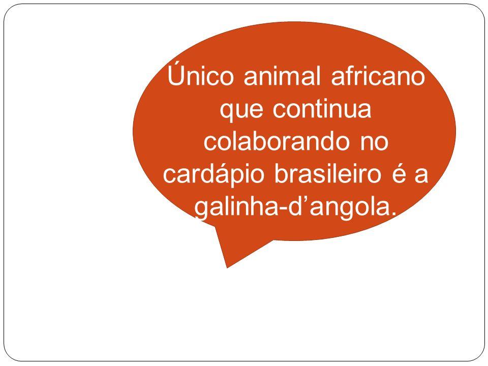 Único animal africano que continua colaborando no cardápio brasileiro é a galinha-dangola.