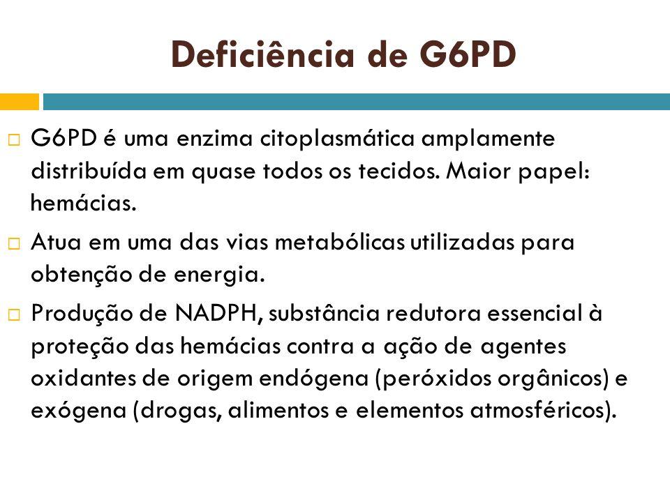 Deficiência de G6PD G6PD é uma enzima citoplasmática amplamente distribuída em quase todos os tecidos. Maior papel: hemácias. Atua em uma das vias met