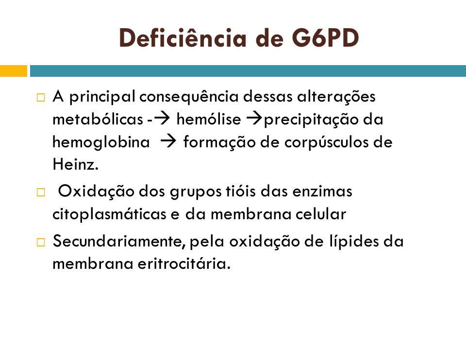 Deficiência de G6PD A principal consequência dessas alterações metabólicas - hemólise precipitação da hemoglobina formação de corpúsculos de Heinz. Ox
