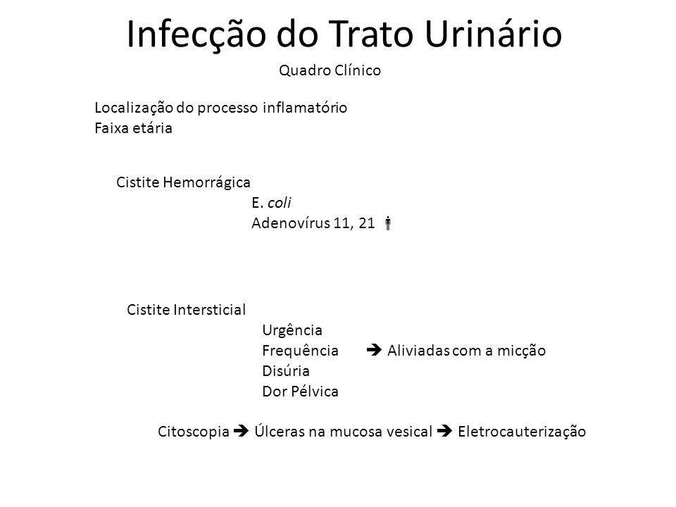 Infecção do Trato Urinário Quadro Clínico Localização do processo inflamatório Faixa etária Cistite Hemorrágica E. coli Adenovírus 11, 21 Cistite Inte