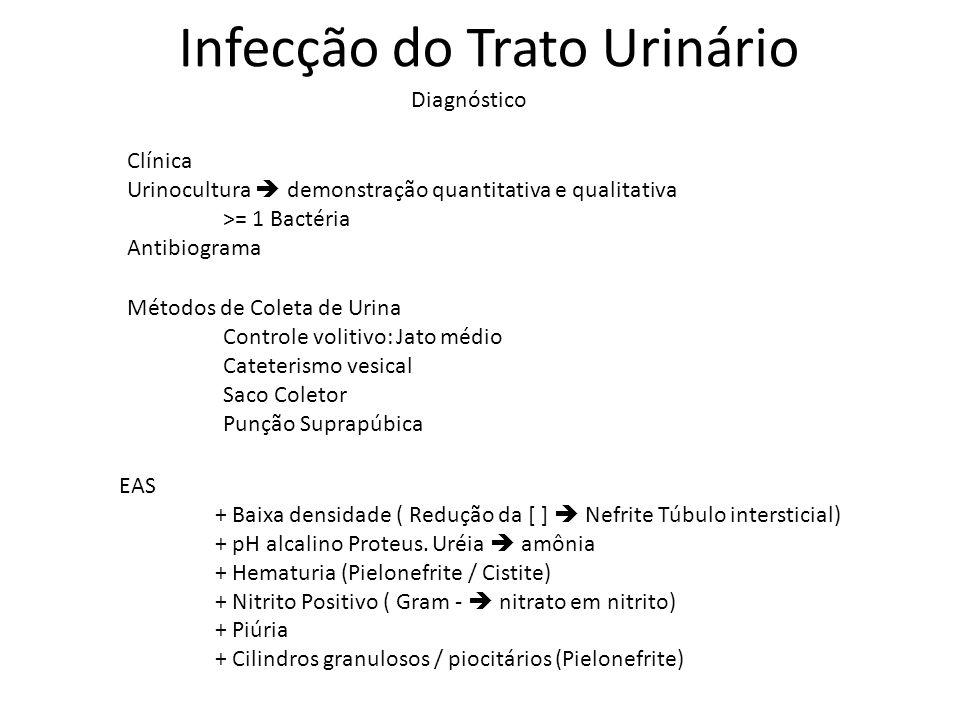 Diagnóstico Infecção do Trato Urinário Clínica Urinocultura demonstração quantitativa e qualitativa >= 1 Bactéria Antibiograma Métodos de Coleta de Ur