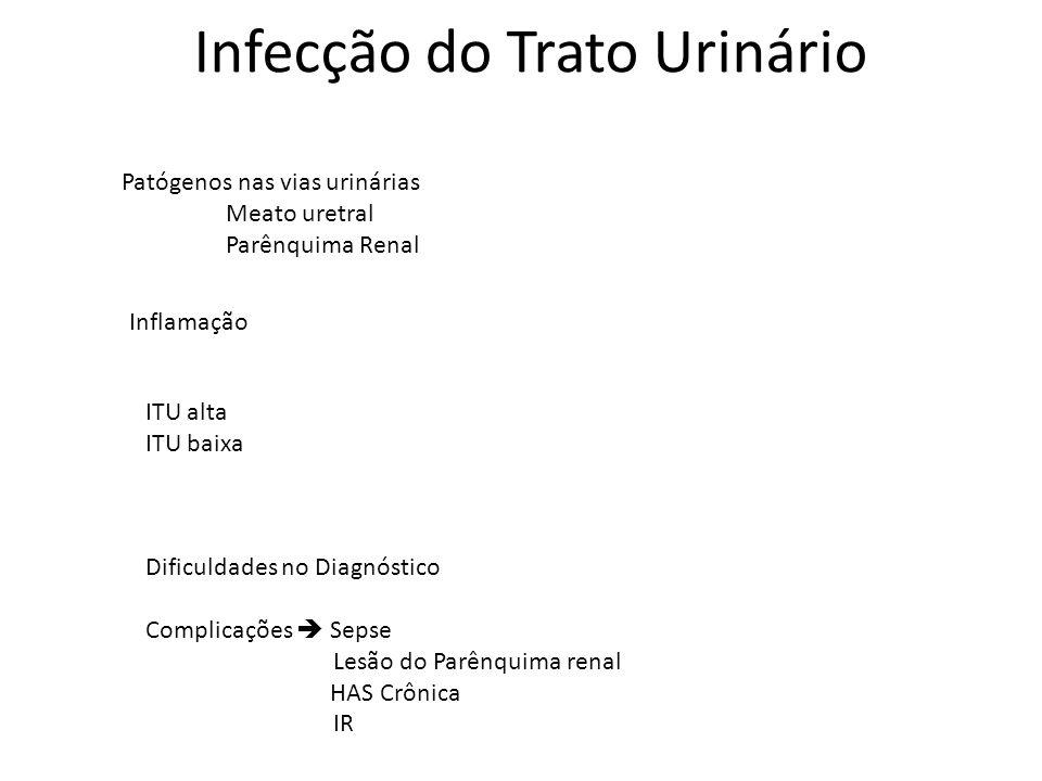 Infecção do Trato Urinário Patógenos nas vias urinárias Meato uretral Parênquima Renal Inflamação ITU alta ITU baixa Dificuldades no Diagnóstico Compl