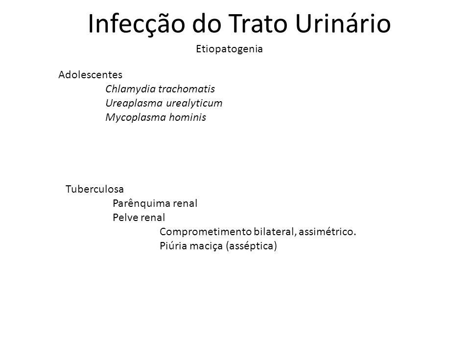 Infecção do Trato Urinário Etiopatogenia Adolescentes Chlamydia trachomatis Ureaplasma urealyticum Mycoplasma hominis Tuberculosa Parênquima renal Pel
