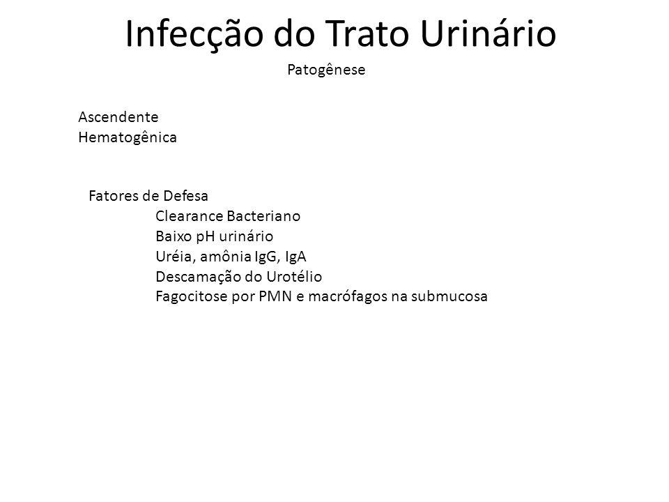 Infecção do Trato Urinário Ascendente Hematogênica Patogênese Fatores de Defesa Clearance Bacteriano Baixo pH urinário Uréia, amônia IgG, IgA Descamaç