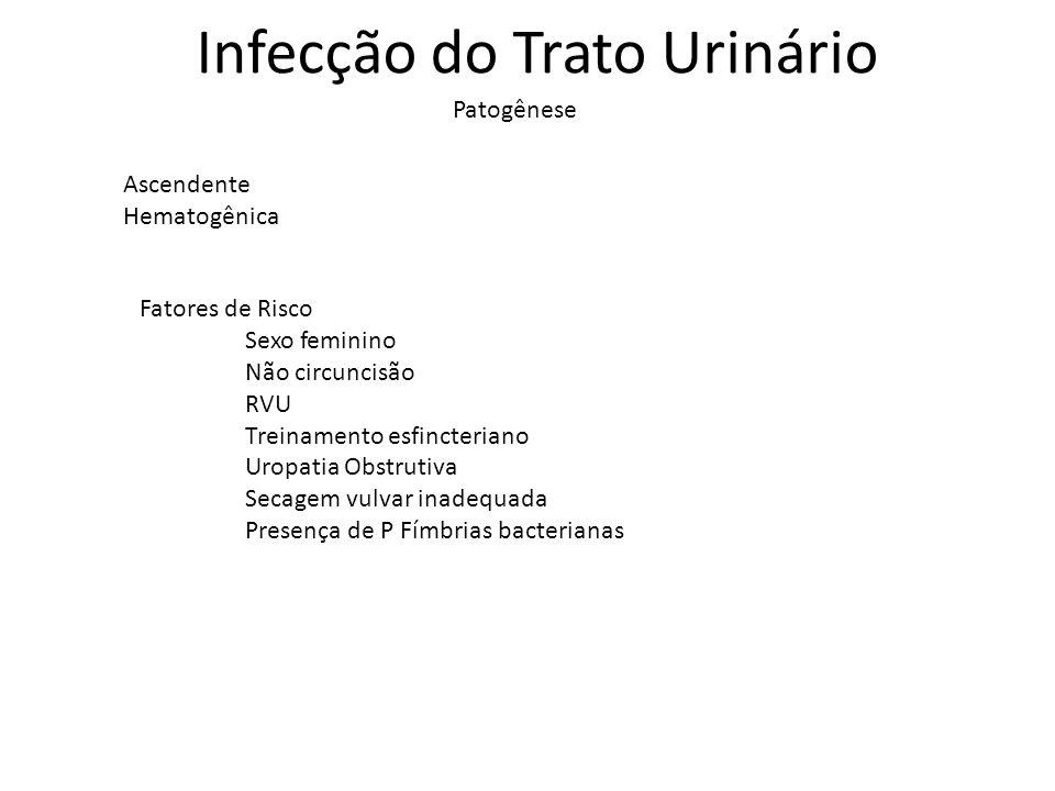 Infecção do Trato Urinário Ascendente Hematogênica Patogênese Fatores de Risco Sexo feminino Não circuncisão RVU Treinamento esfincteriano Uropatia Ob