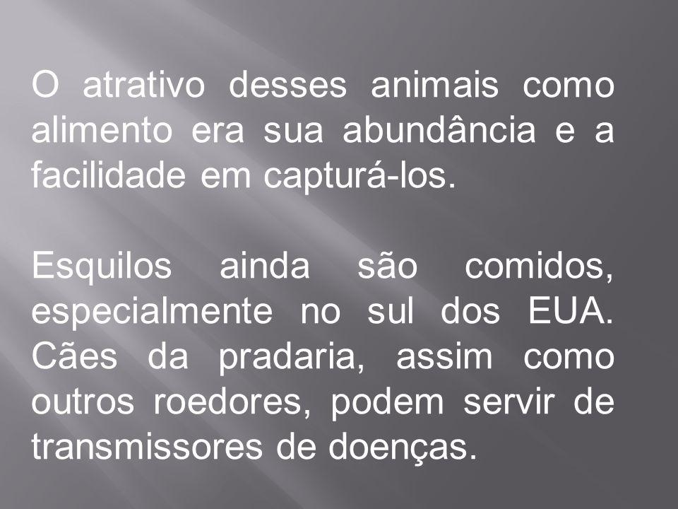 O atrativo desses animais como alimento era sua abundância e a facilidade em capturá-los. Esquilos ainda são comidos, especialmente no sul dos EUA. Cã