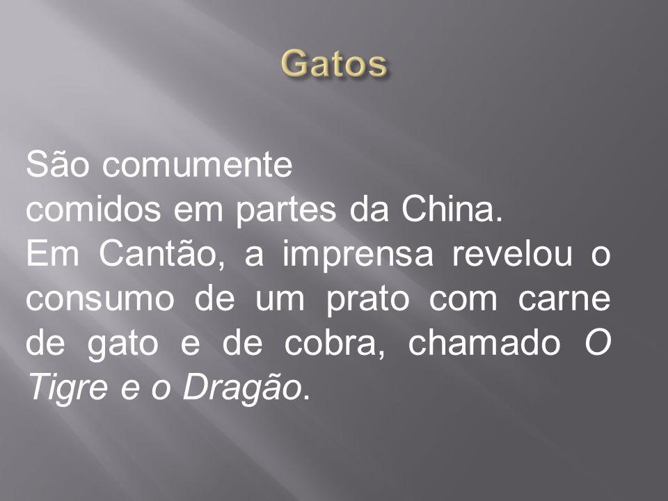 São comumente comidos em partes da China. Em Cantão, a imprensa revelou o consumo de um prato com carne de gato e de cobra, chamado O Tigre e o Dragão