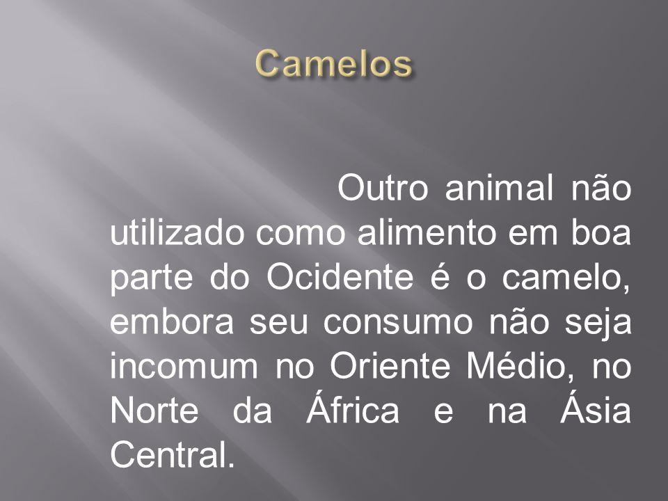 Outro animal não utilizado como alimento em boa parte do Ocidente é o camelo, embora seu consumo não seja incomum no Oriente Médio, no Norte da África