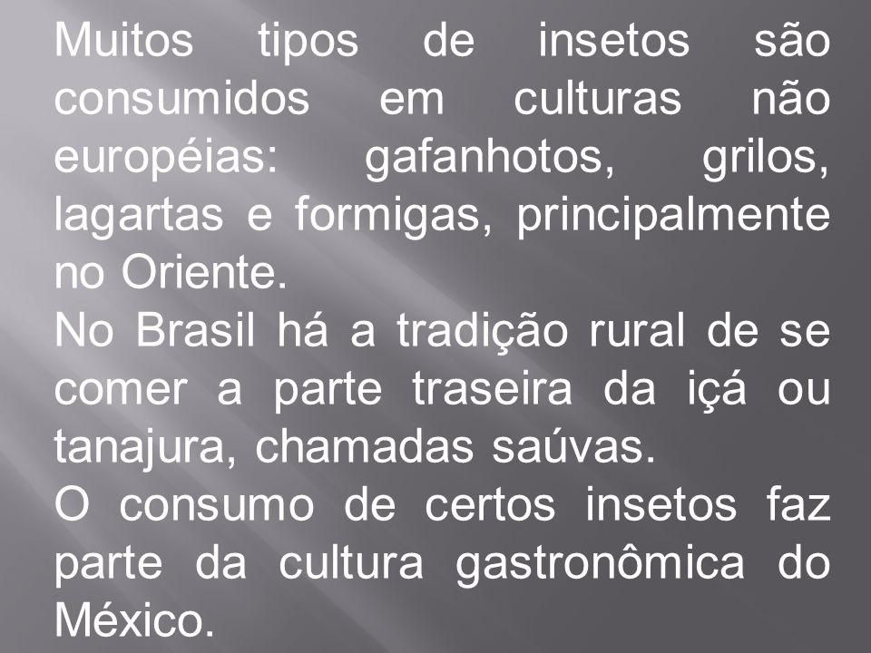 Muitos tipos de insetos são consumidos em culturas não européias: gafanhotos, grilos, lagartas e formigas, principalmente no Oriente. No Brasil há a t