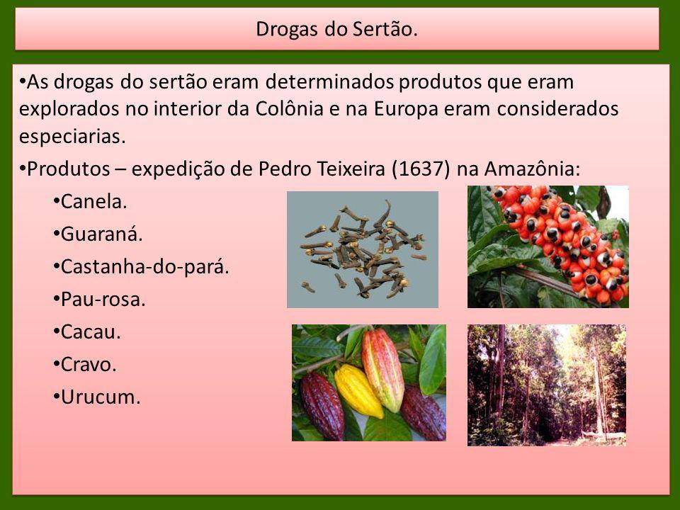 As drogas do sertão eram determinados produtos que eram explorados no interior da Colônia e na Europa eram considerados especiarias. Produtos – expedi