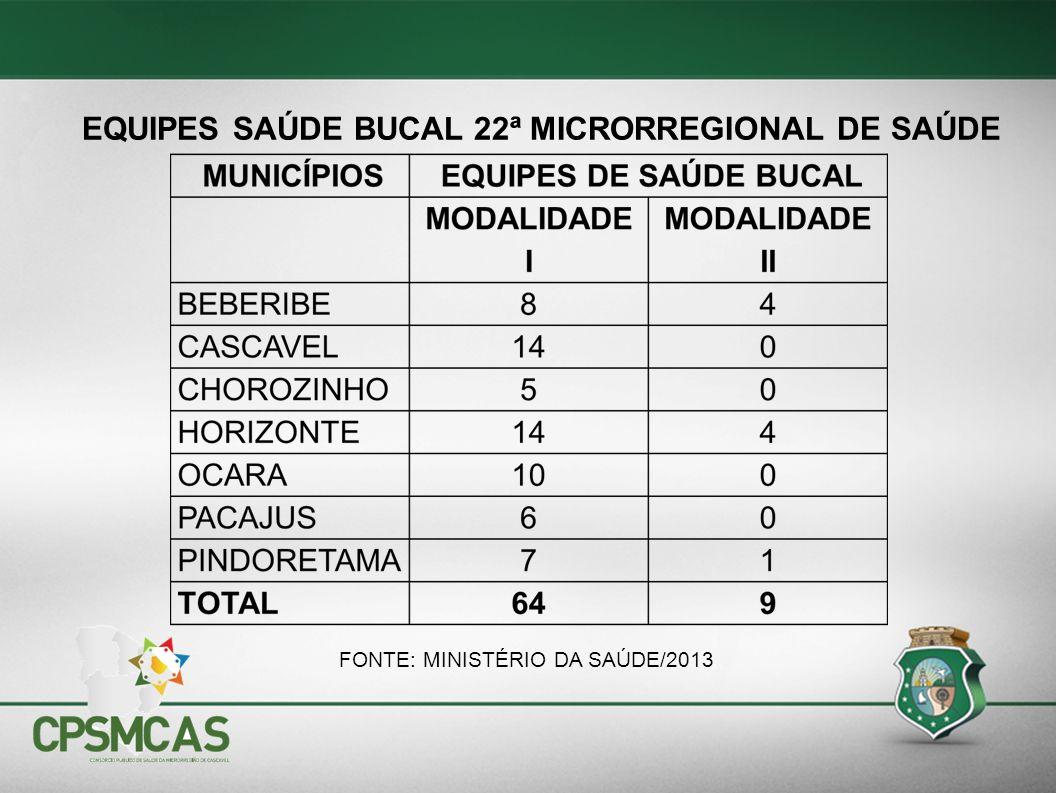 EQUIPES SAÚDE BUCAL 22ª MICRORREGIONAL DE SAÚDE FONTE: MINISTÉRIO DA SAÚDE/2013