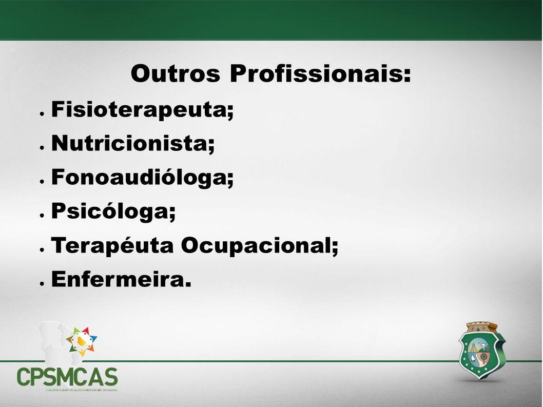 Outros Profissionais: Fisioterapeuta; Nutricionista; Fonoaudióloga; Psicóloga; Terapéuta Ocupacional; Enfermeira.