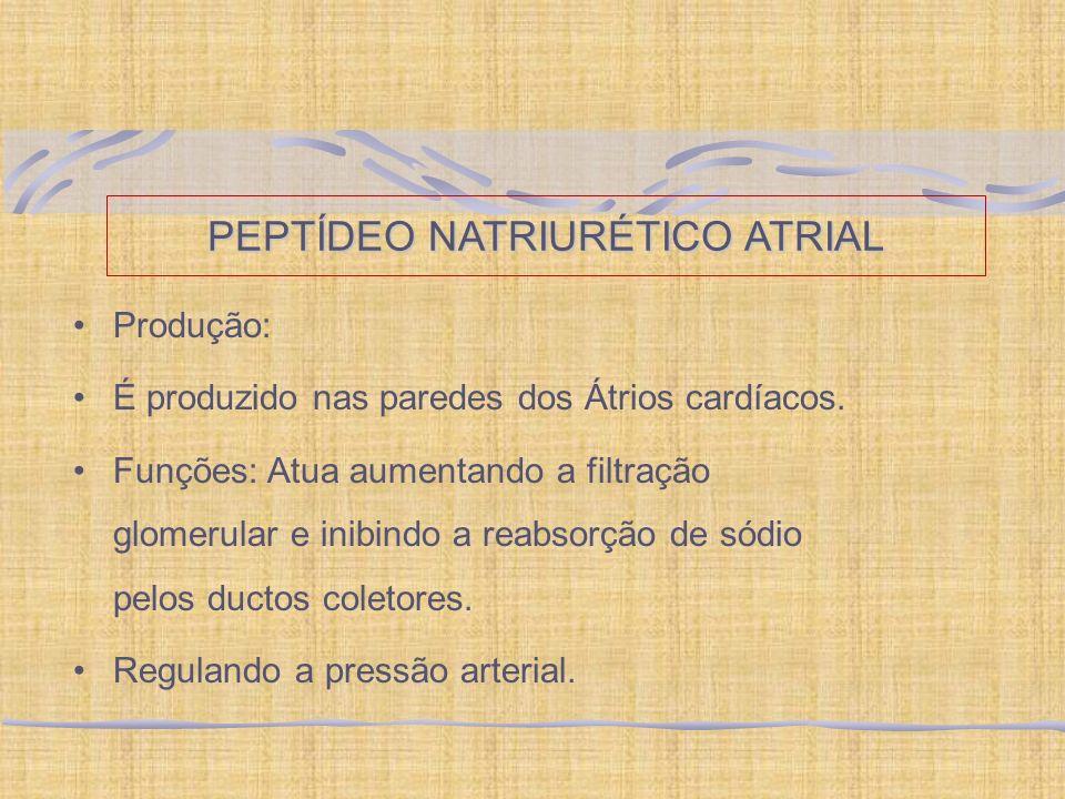 PEPTÍDEO NATRIURÉTICO ATRIAL Produção: É produzido nas paredes dos Átrios cardíacos. Funções: Atua aumentando a filtração glomerular e inibindo a reab