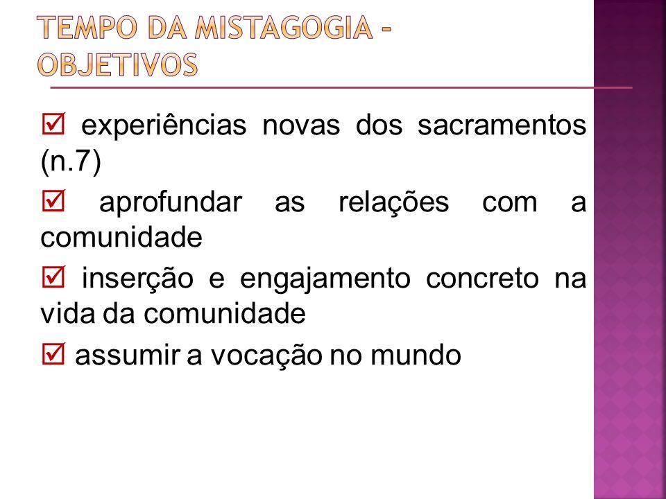 experiências novas dos sacramentos (n.7) aprofundar as relações com a comunidade inserção e engajamento concreto na vida da comunidade assumir a vocaç
