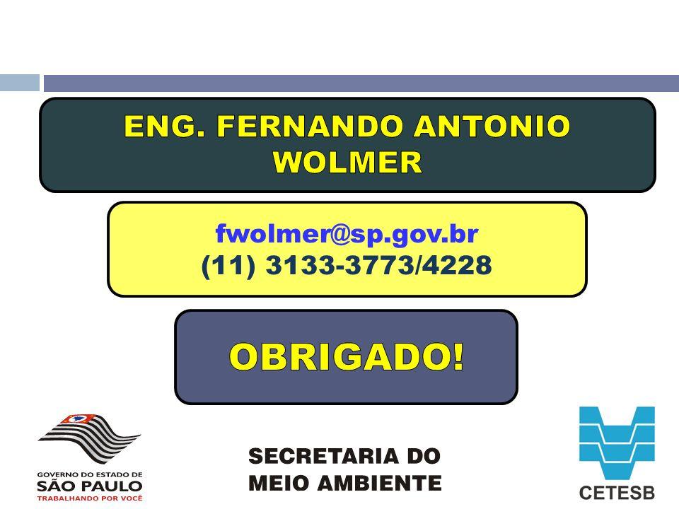 fwolmer@sp.gov.br (11) 3133-3773/4228