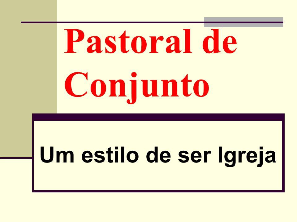 A 46ª Assembleia Geral dos Bispos do Brasil, ocorrida em Indaiatuba (SP), de 30 de abril a 9 de maio de 2008, aprovou as diretrizes que compreendem o triênio 2008-2010, assim resumidas no seu objetivo geral: Evangelizar a partir do encontro com Jesus Cristo, como discípulos missionários à luz da evangélica opção preferencial pelos pobres, promovendo a dignidade da pessoa, renovando a comunidade, Participando da construção de uma Sociedade justa e solidária, para que todas tenham vida e a tenham em abundância (Jo 10,10).