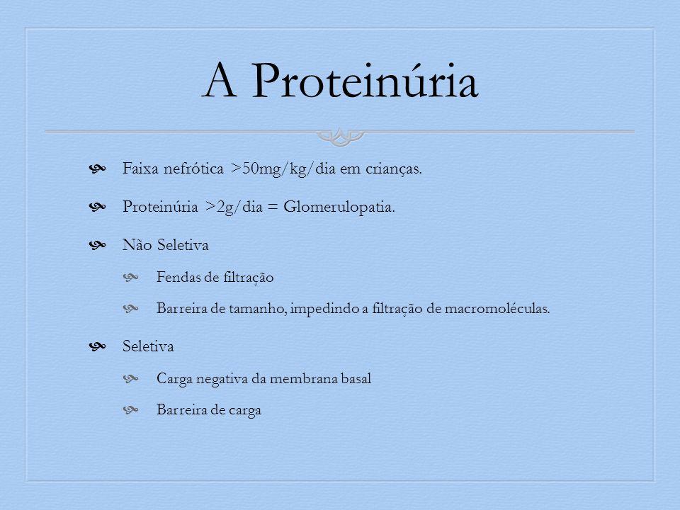 A Proteinúria Faixa nefrótica >50mg/kg/dia em crianças. Proteinúria >2g/dia = Glomerulopatia. Não Seletiva Fendas de filtração Barreira de tamanho, im