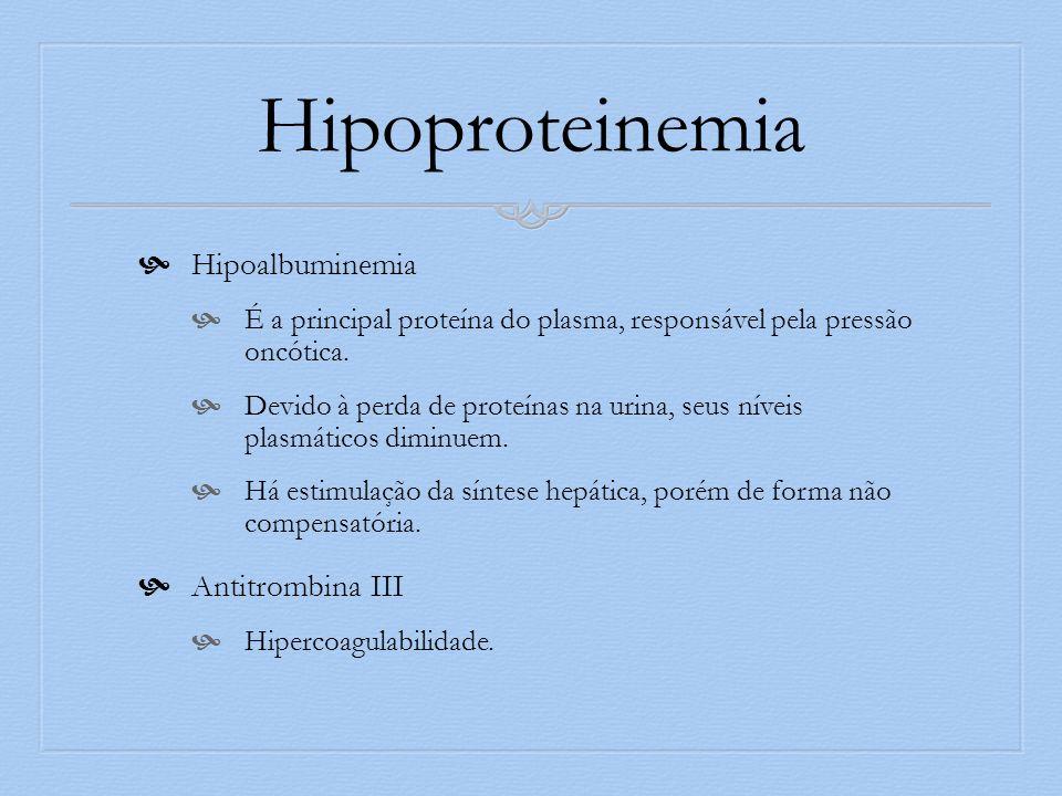 Hipoproteinemia Hipoalbuminemia É a principal proteína do plasma, responsável pela pressão oncótica. Devido à perda de proteínas na urina, seus níveis