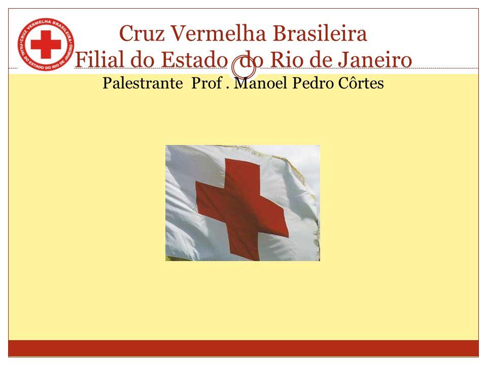 TEMA: VIOLÊNCIA DOMÉSTICA RIO DE JANEIRO 2011 Cruz Vermelha Brasileira Filial do Estado do Rio de Janeiro Palestrante: Prof.
