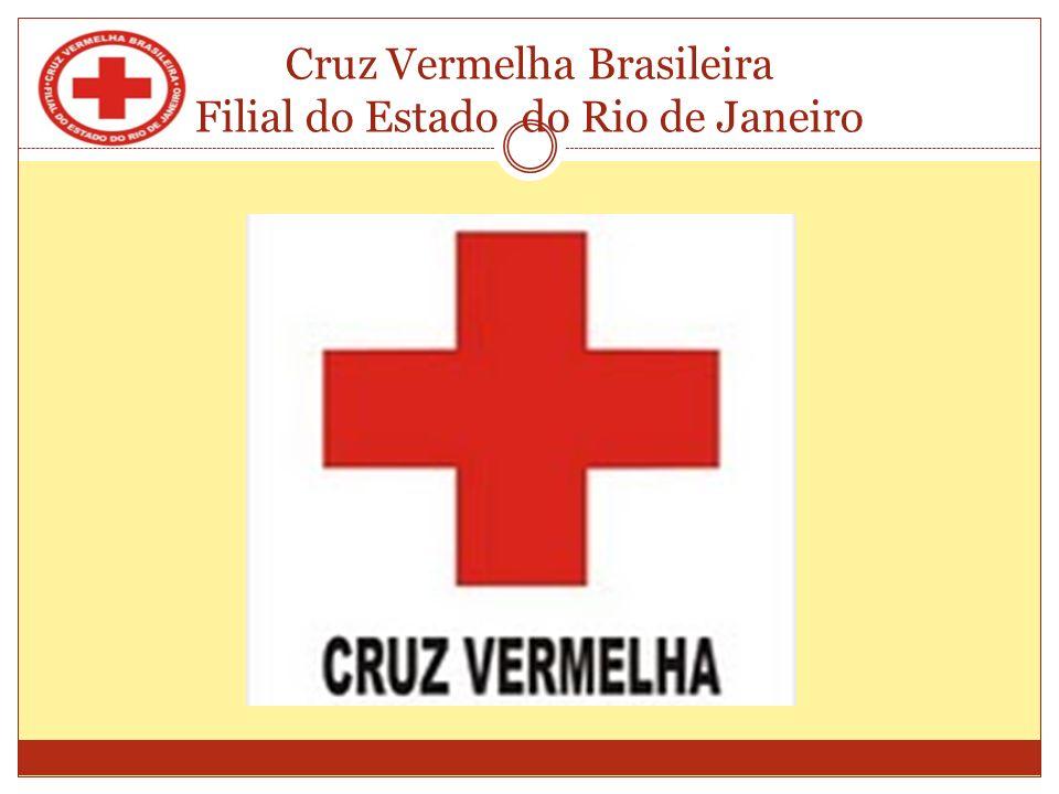 Cruz Vermelha Brasileira Filial do Estado do Rio de Janeiro Violência Física Violência física é o uso da força com o objectivo de ferir, deixando ou não marcas evidentes.