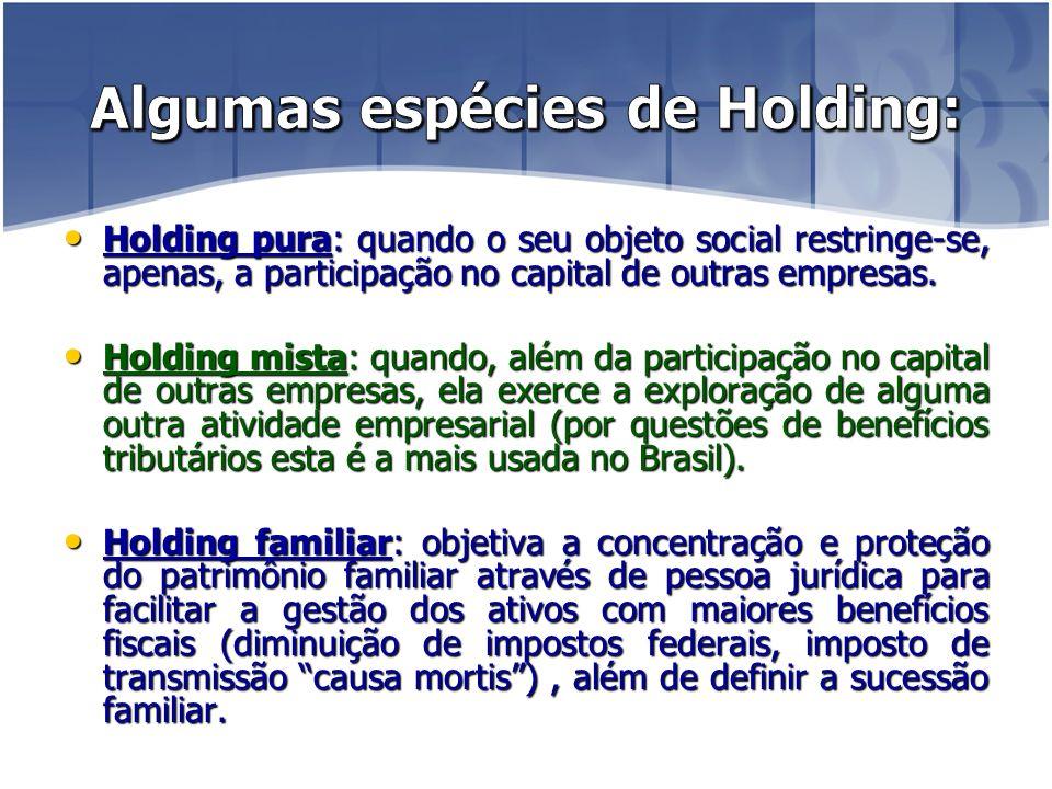 Holding pura: quando o seu objeto social restringe-se, apenas, a participação no capital de outras empresas.