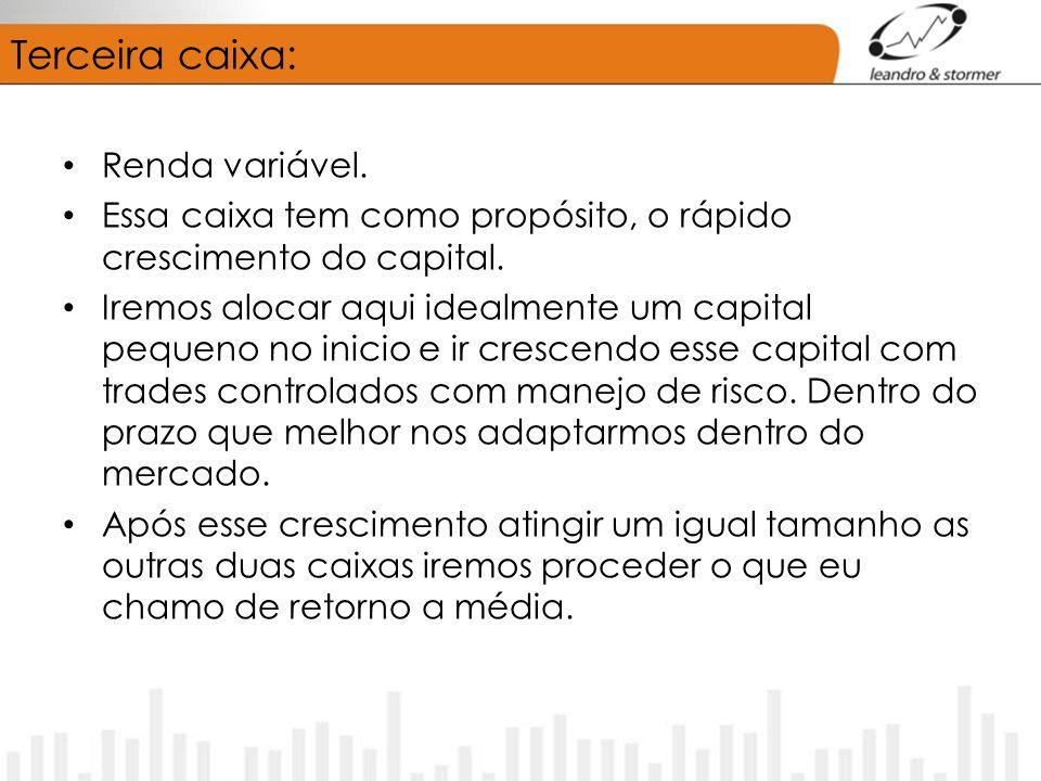 Terceira caixa: Renda variável. Essa caixa tem como propósito, o rápido crescimento do capital. Iremos alocar aqui idealmente um capital pequeno no in