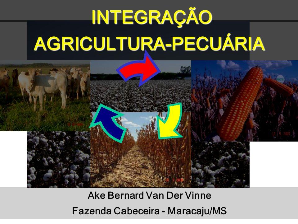 INTEGRAÇÃO AGRICULTURA-PECUÁRIA INTEGRAÇÃO AGRICULTURA-PECUÁRIA Ake Bernard Van Der Vinne Fazenda Cabeceira - Maracaju/MS
