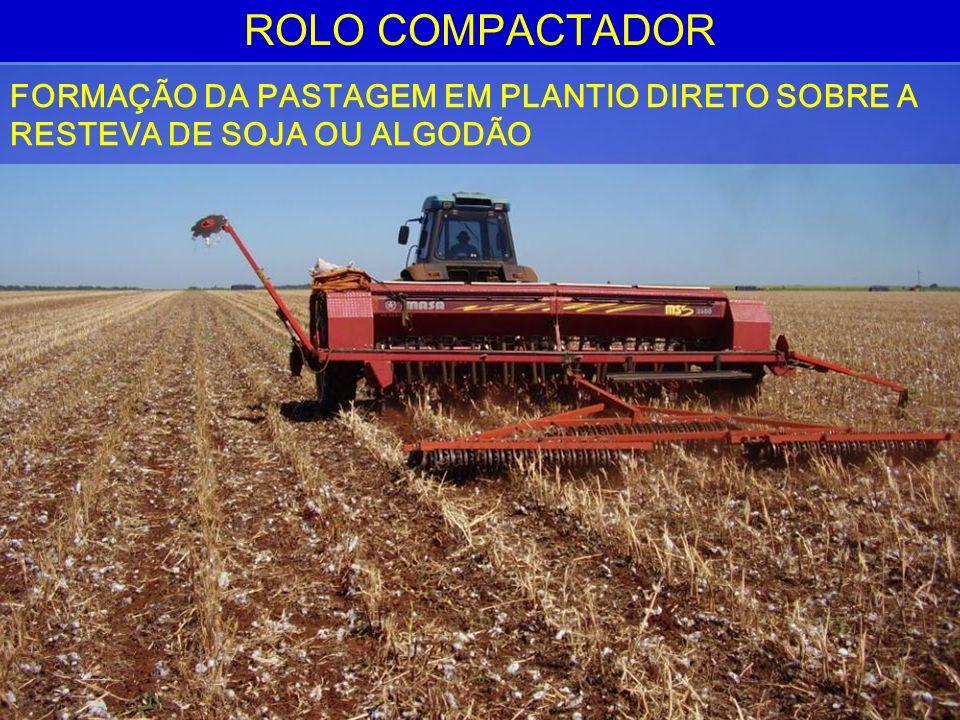 ROLO COMPACTADOR FORMAÇÃO DA PASTAGEM EM PLANTIO DIRETO SOBRE A RESTEVA DE SOJA OU ALGODÃO