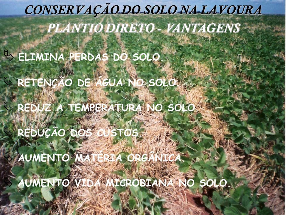 CONSERVAÇÃO DO SOLO NA LAVOURA ELIMINA PERDAS DO SOLO. RETENÇÃO DE ÁGUA NO SOLO. REDUZ A TEMPERATURA NO SOLO. REDUÇÃO DOS CUSTOS. AUMENTO MATÉRIA ORGÂ
