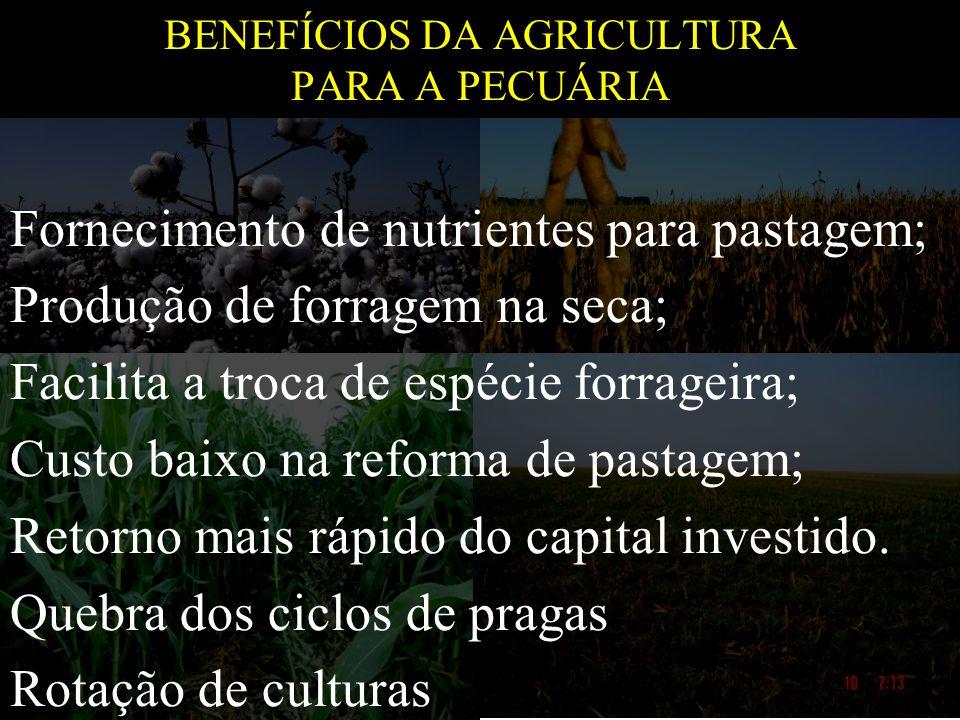 BENEFÍCIOS DA AGRICULTURA PARA A PECUÁRIA Fornecimento de nutrientes para pastagem; Produção de forragem na seca; Facilita a troca de espécie forragei