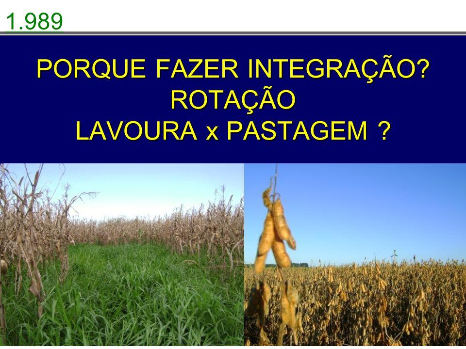 PROBLEMAS NA LAVOURA VERÃO Falta de culturas viáveis, para fazer ROTAÇÃO com a soja.