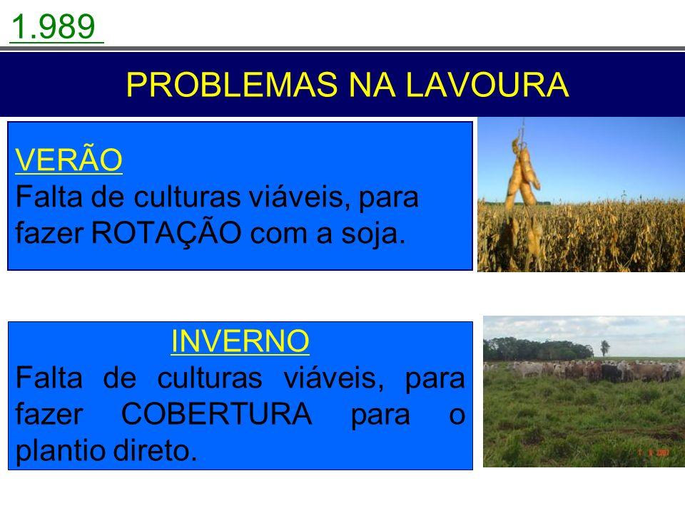 PROBLEMAS NA LAVOURA VERÃO Falta de culturas viáveis, para fazer ROTAÇÃO com a soja. INVERNO Falta de culturas viáveis, para fazer COBERTURA para o pl
