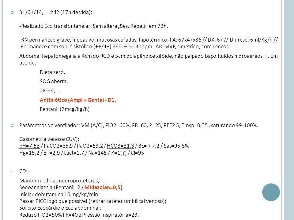 31/01/14, 11h42 (17h de vida): -Realizado Eco transfontanelar: Sem alterações.