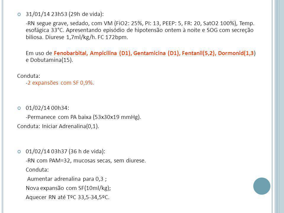 31/01/14 23h53 (29h de vida): -RN segue grave, sedado, com VM (FiO2: 25%, PI: 13, PEEP: 5, FR: 20, SatO2 100%), Temp.