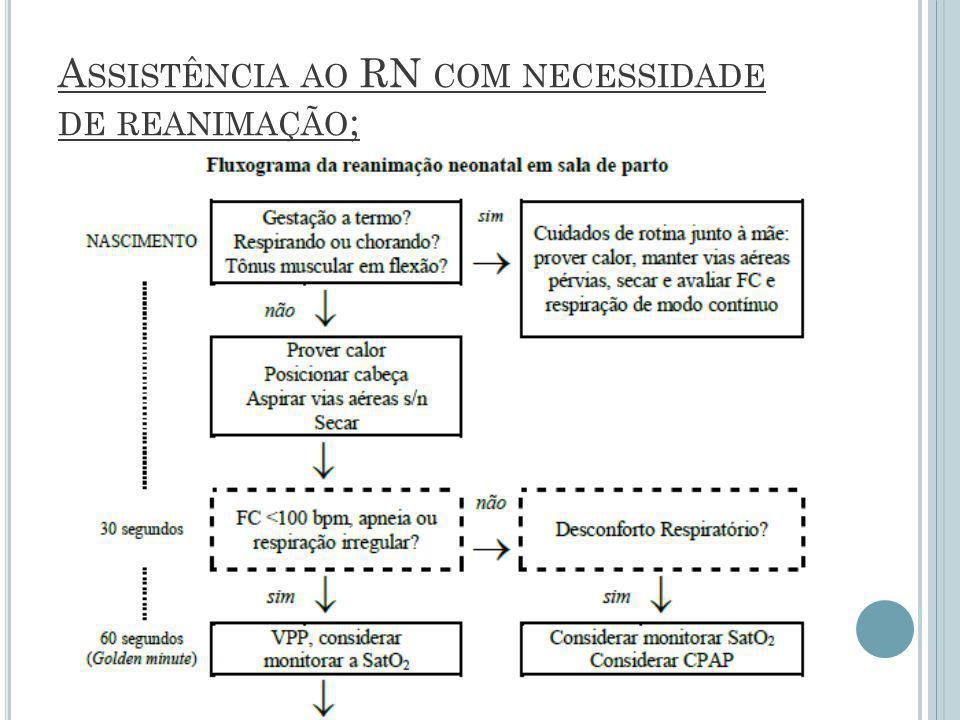 A SSISTÊNCIA AO RN COM NECESSIDADE DE REANIMAÇÃO ;