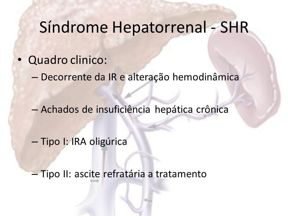 Alterações Hemodinâmicas da SHR : Fatores aumentadosFatores Diminuídos Débito cardíacoPressão arterial Volume sanguíneoResistência vascular sistêmica Sistemas vasoconstrictoresResistência vascular esplâncnica Pressão portal Resistência vascular renal Resistência vascular cerebral
