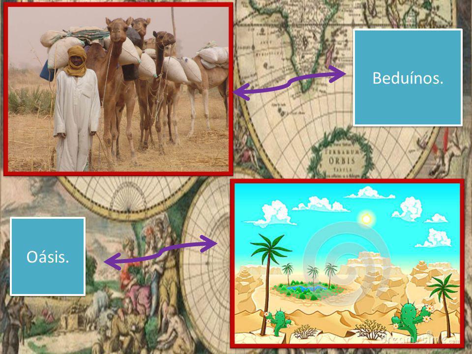 Oásis. Beduínos.
