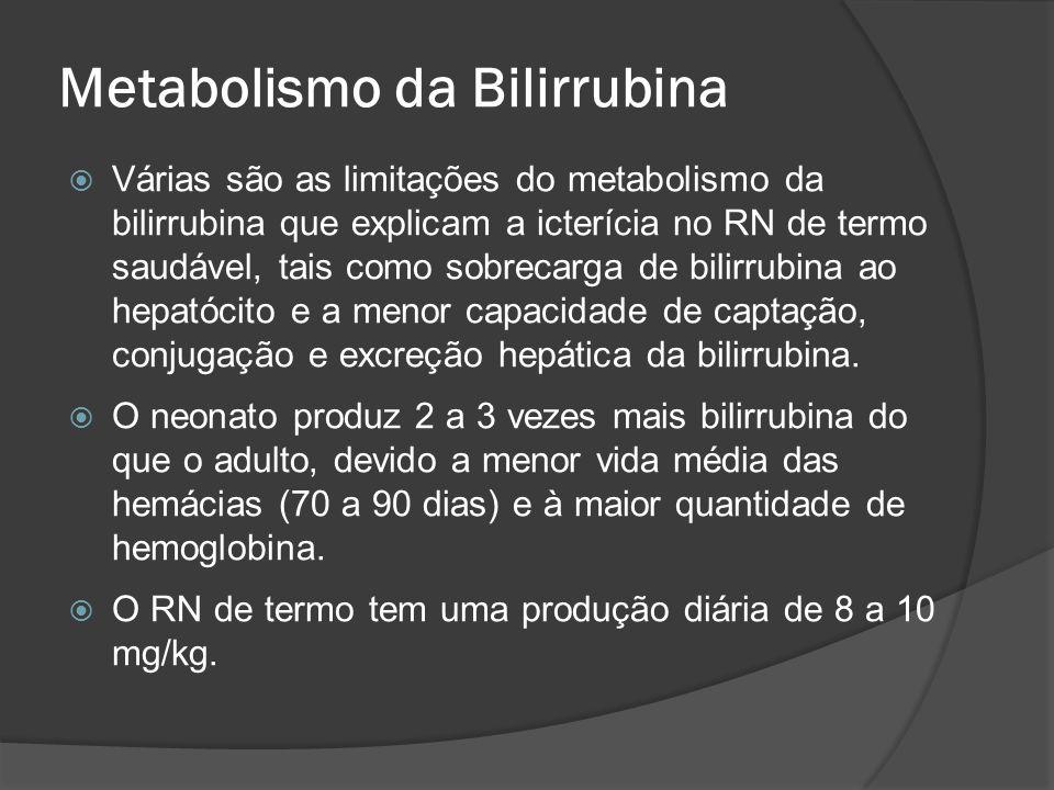 Metabolismo da Bilirrubina Várias são as limitações do metabolismo da bilirrubina que explicam a icterícia no RN de termo saudável, tais como sobrecar