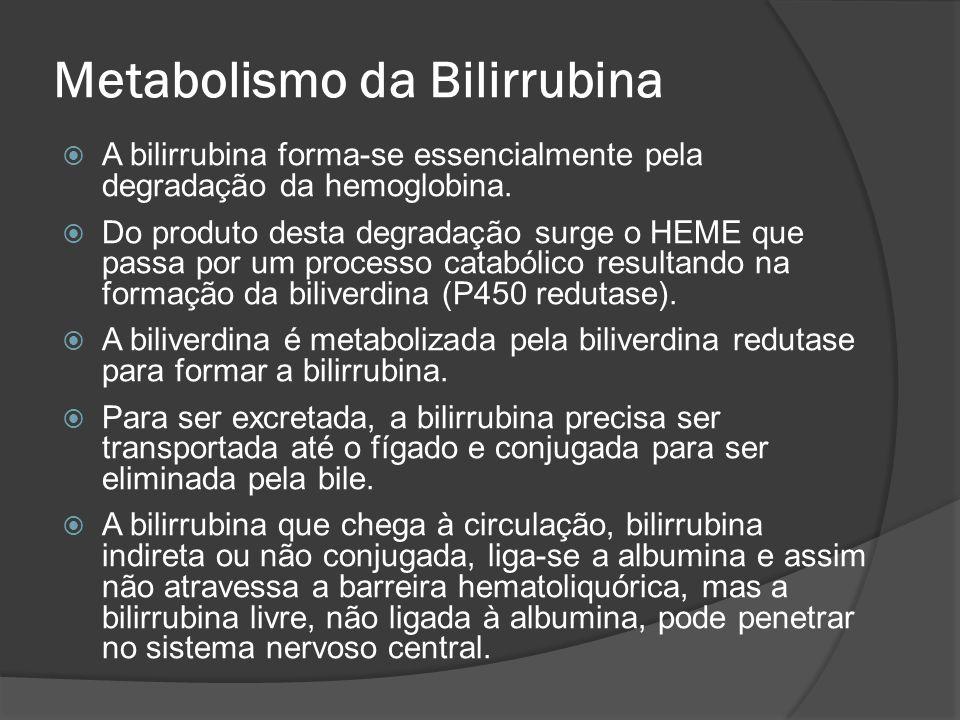 Metabolismo da Bilirrubina A bilirrubina forma-se essencialmente pela degradação da hemoglobina. Do produto desta degradação surge o HEME que passa po