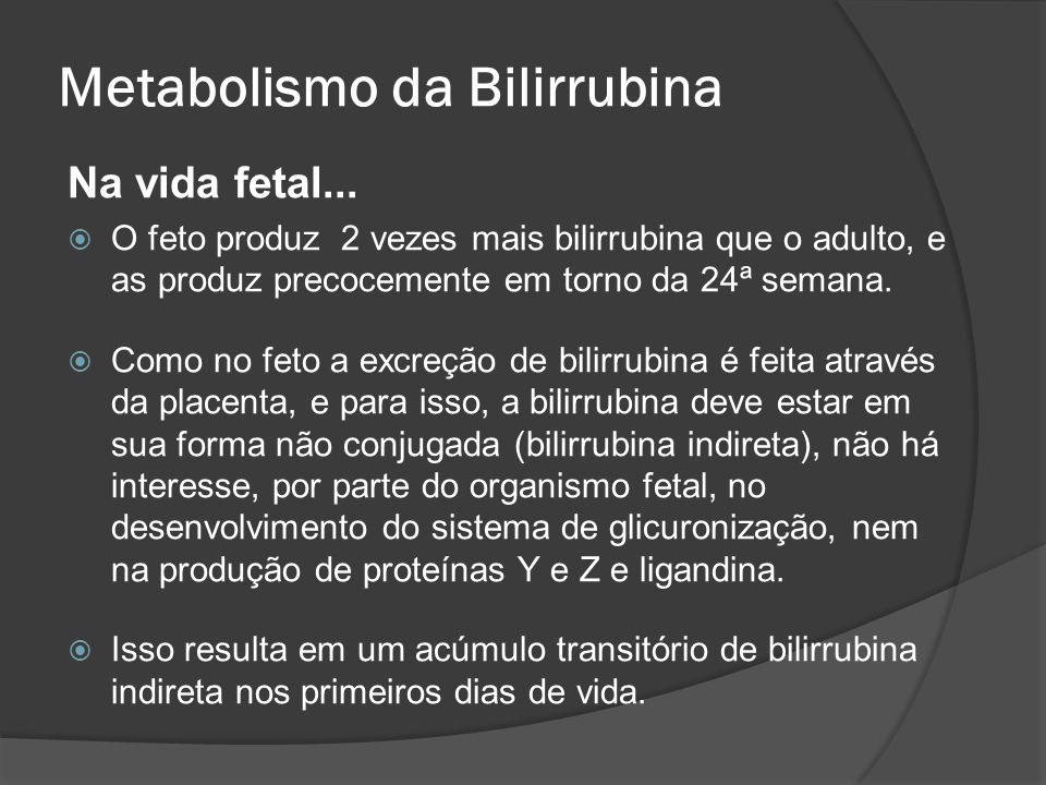 Metabolismo da Bilirrubina Na vida fetal... O feto produz 2 vezes mais bilirrubina que o adulto, e as produz precocemente em torno da 24ª semana. Como