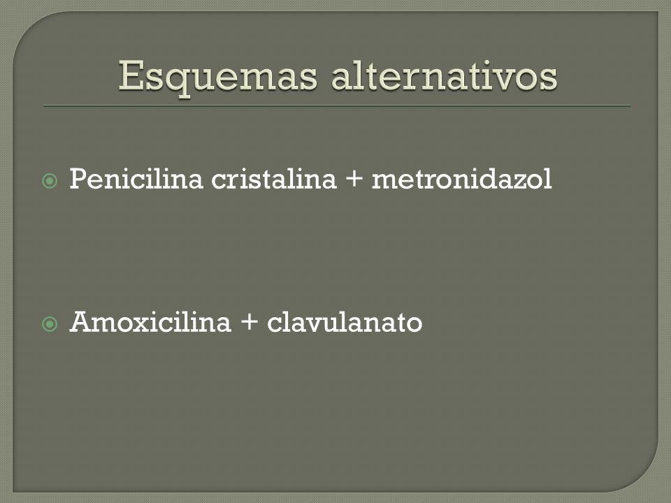 Penicilina cristalina + metronidazol Amoxicilina + clavulanato