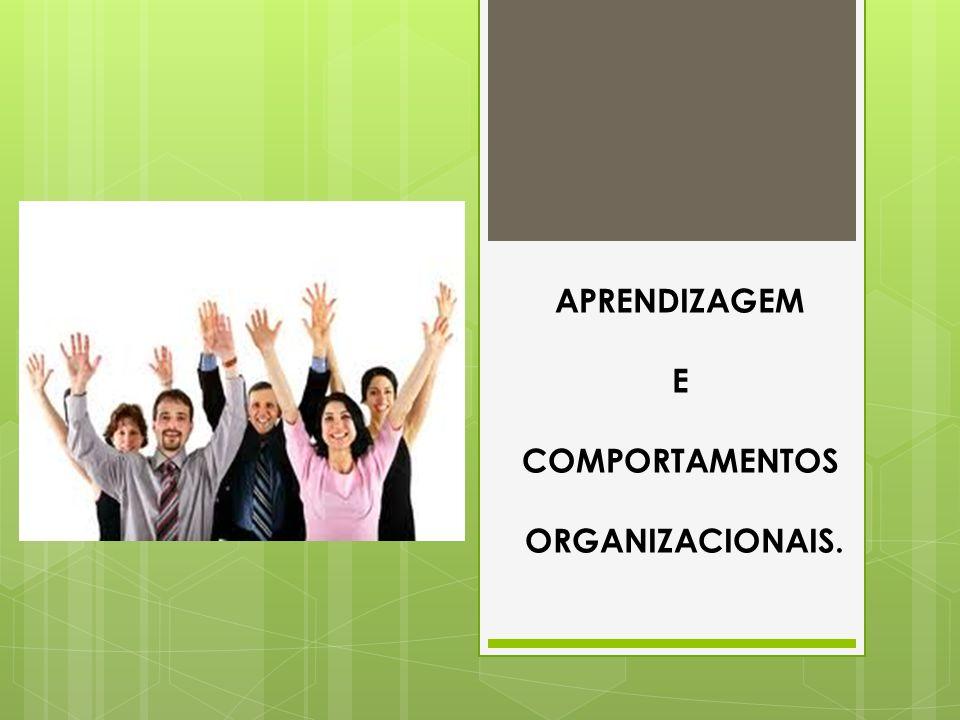 Forma de Conversão - EXTERNALIZAÇÃO Desenvolvem por meio do uso de metáforas, conceitos, analogias, usadas em geral nos diálogos e reflexões coletivas.