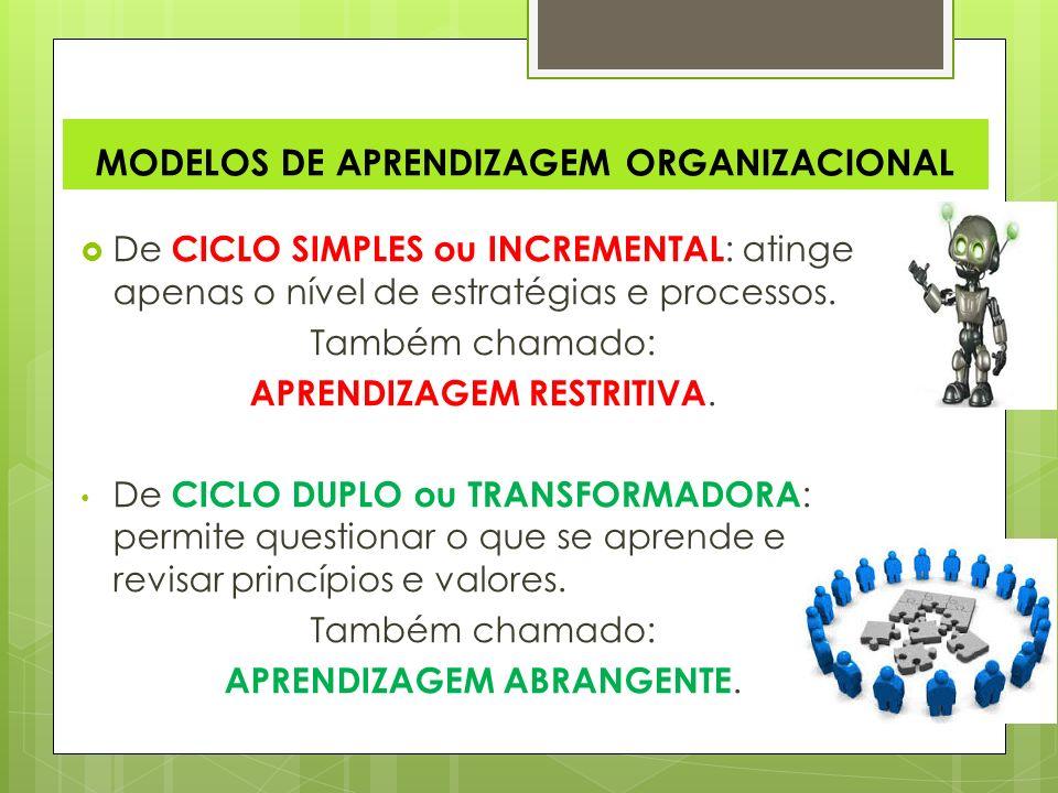 O mais indicado, é que as organizações utilizem-se dos dois estilos de aprendizagem sendo: Explícito e Tácito.