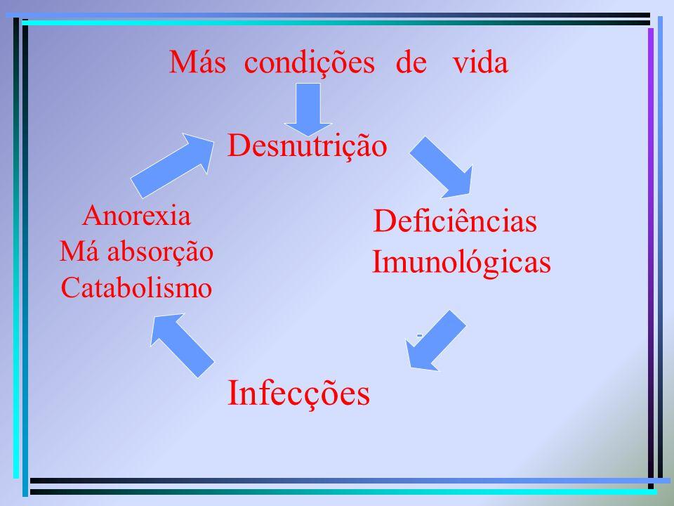 Más condições de vida Desnutrição Deficiências Imunológicas Infecções Anorexia Má absorção Catabolismo